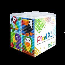 XL kubus 24102 vogels