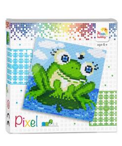 Pixel kikker Pixelhobby