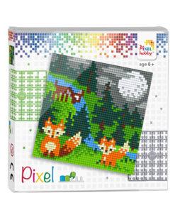 Pixel vos Pixelhobby