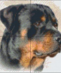 Pixelcraft Pixelhobby patroon Rottweiler Howard Robinson
