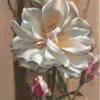 Pixelhobby patroon Rose of Toblach Pixel craft patroon Vie Dunn-Harr