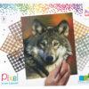 90047_Wolf_9BP_EN